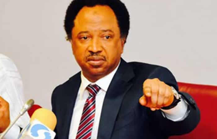 Shehu Sani reacts to N'assembly decision on electronic transmission of election results