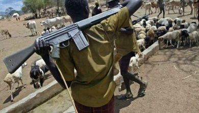 Suspected herdsmen attack Benue community, kill 2, abduct one