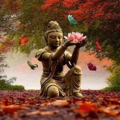 Lichtmeester Boeddha