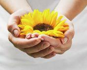 Vergeving, bevrijd jezelf van schuld, schaamte, wrok en meer