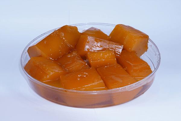 kabak2