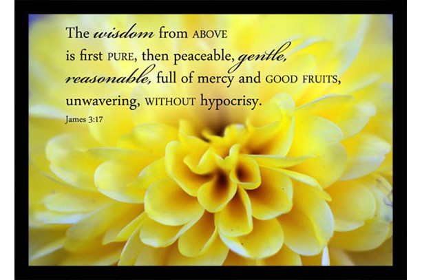 Yellow Chrsanthemum Photo With Scripture Art Aftcra