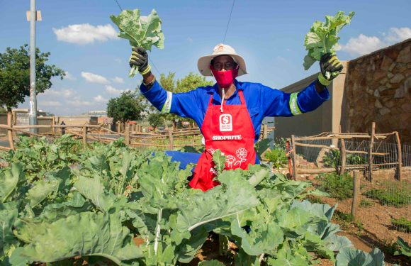 Shoprite sets Soweto gardens on the road to reaching their long-term goals