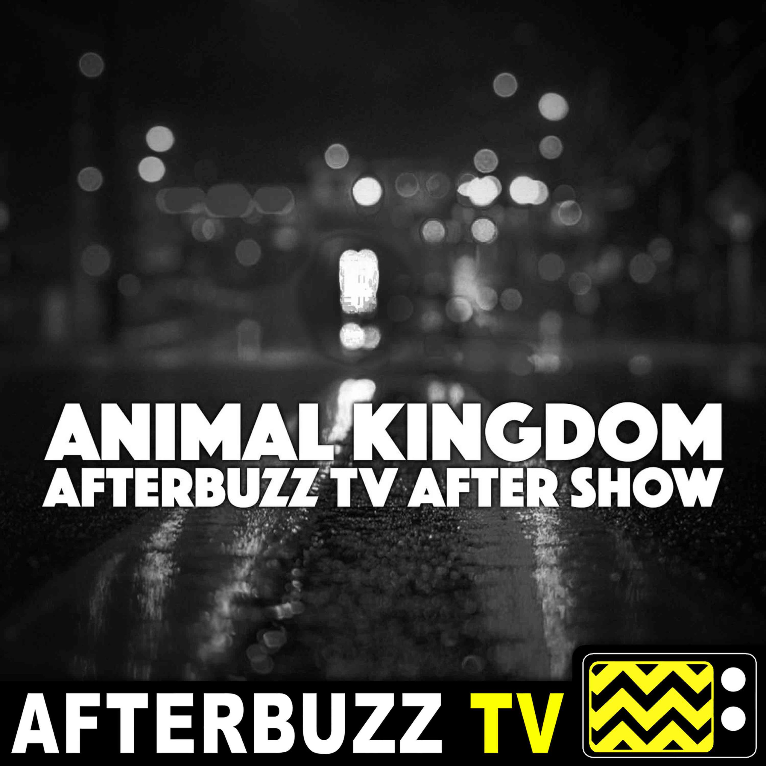 The Animal Kingdom Podcast