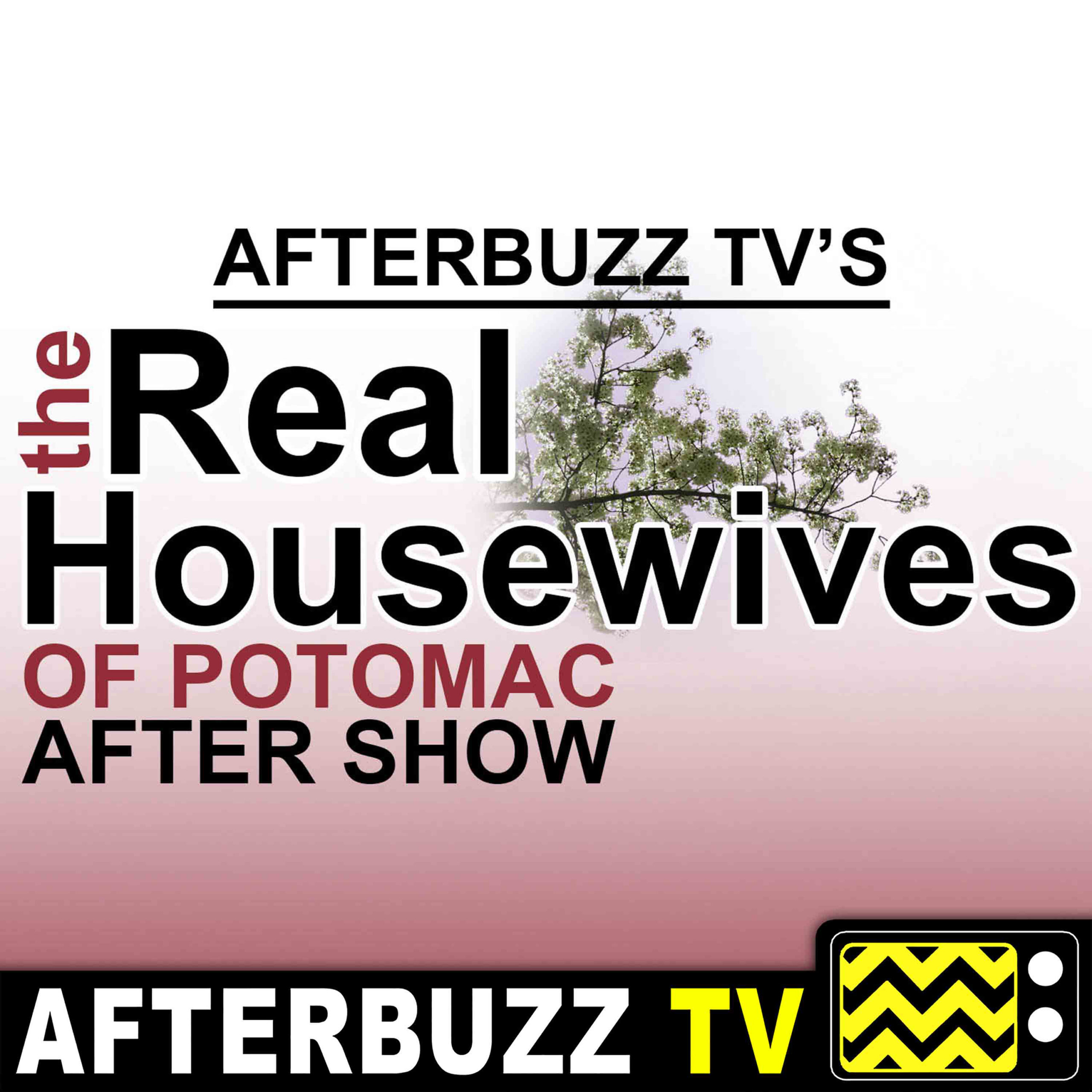 """Reunion Part 3"" Season 4 Episode 21 'Real Housewives of Potomac' Review"