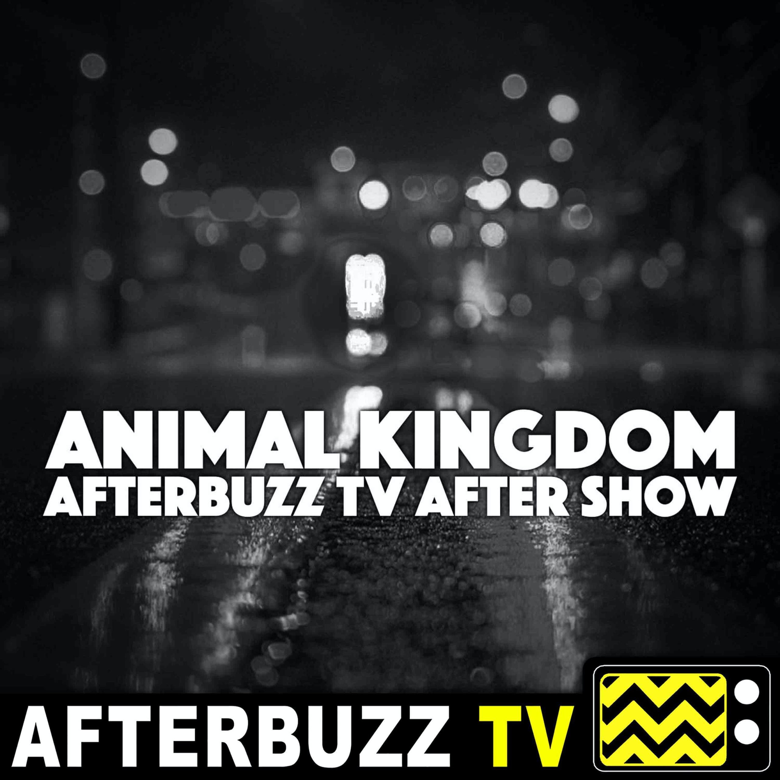 The Animal Kingdom Podcast