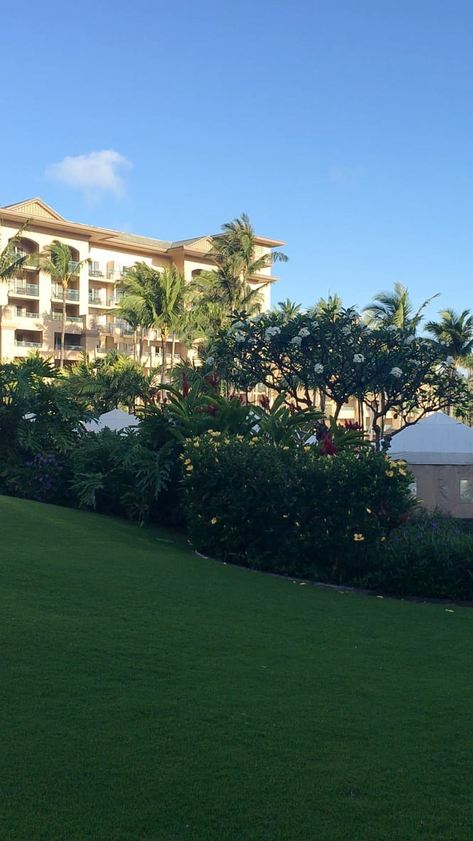 Ritz Carlton, Hotel Review-The Ritz-Maui-Hawaii-Vacation-Collaboration-2