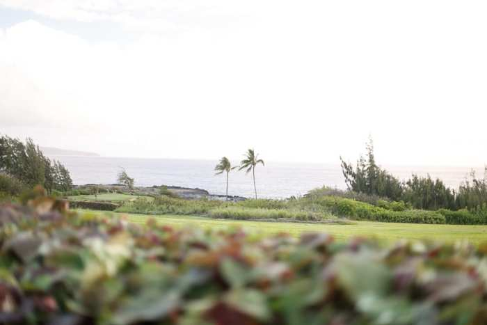 Ritz Carlton, Hotel Review-The Ritz-Maui-Hawaii-Vacation-Collaboration-7