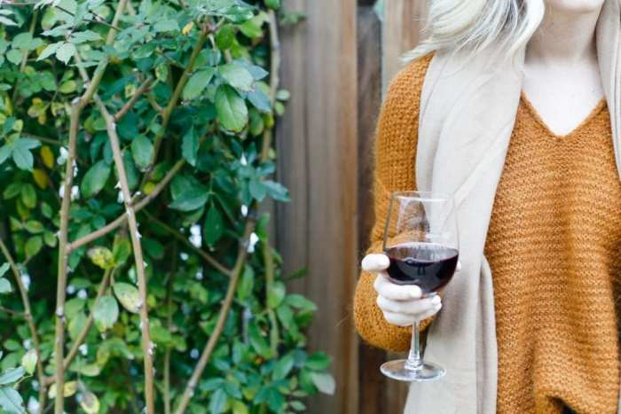 autumn-in-sonoma-with-free-people-sweaters-1