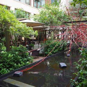 Courtyard / Cour Intérieure