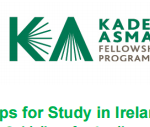 Embassy of Ireland in South Africa Fully-funded Fellowships for South African and Zimbabwean Students 2017/2018