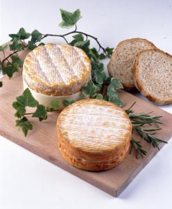 Le livarot est l'un de plus anciens fromages de la Normandie