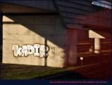 09 04_140527 Theo Boddeus