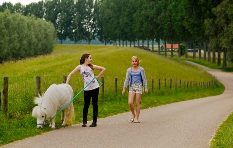 140601 Biesbosch (25) Ton van Boxsel