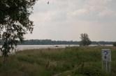 140601 Biesbosch (9) Els Gijzen