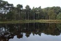 12 141105 (20) Joop Rijndorp