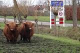 WGN 140204 Koos van der Blom (2)