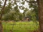 10 FVDM VERVAL 151020 (29) Piet Hanegraaf