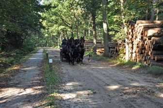 WGN 161116 Joop Rijndorp