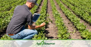 How to find a job in agriculture