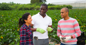Attracting and retaining diverse leadership in agriculture