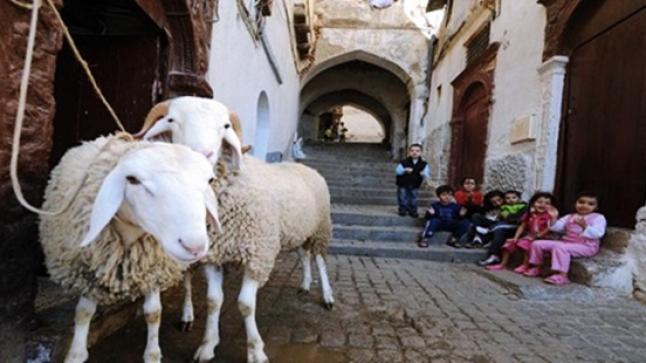 فلكي من أكادير: هذا هو موعد حلول عيد الأضحى المبارك