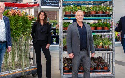 Se está gestando una nueva potencia de plantas: Waterdrinker, OZ Planten y Hamiplant, unen fuerzas para convertirse en Dutch Plant Group