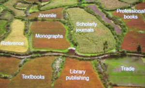 Fields of publishing