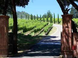 ATG Quirkies: Wine Not? University Wine Tasting Teams