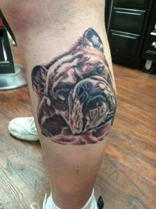 dog_portrait_knoxville