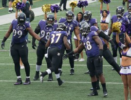 Don't miss out on the Baltimore Ravens in the week 15 NFL picks for underdogs. Flickr/Keith Allison