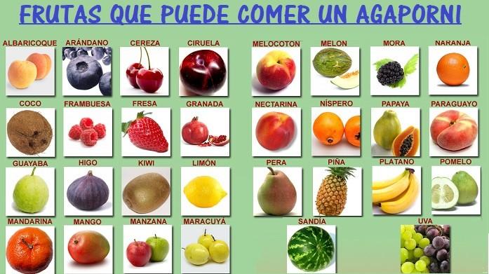 frutas comida agapornis