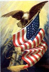 a graphic - eagle with flag