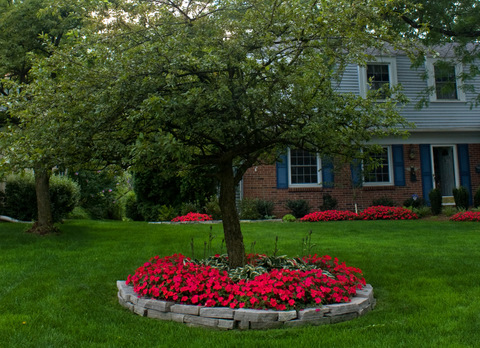 front yard garden space landscaping