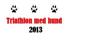 logga triathlon
