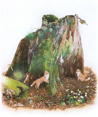 森のこどもたちと(46.0×34.0cm)