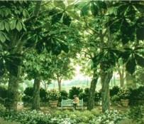 5,6月 マロニエの木陰