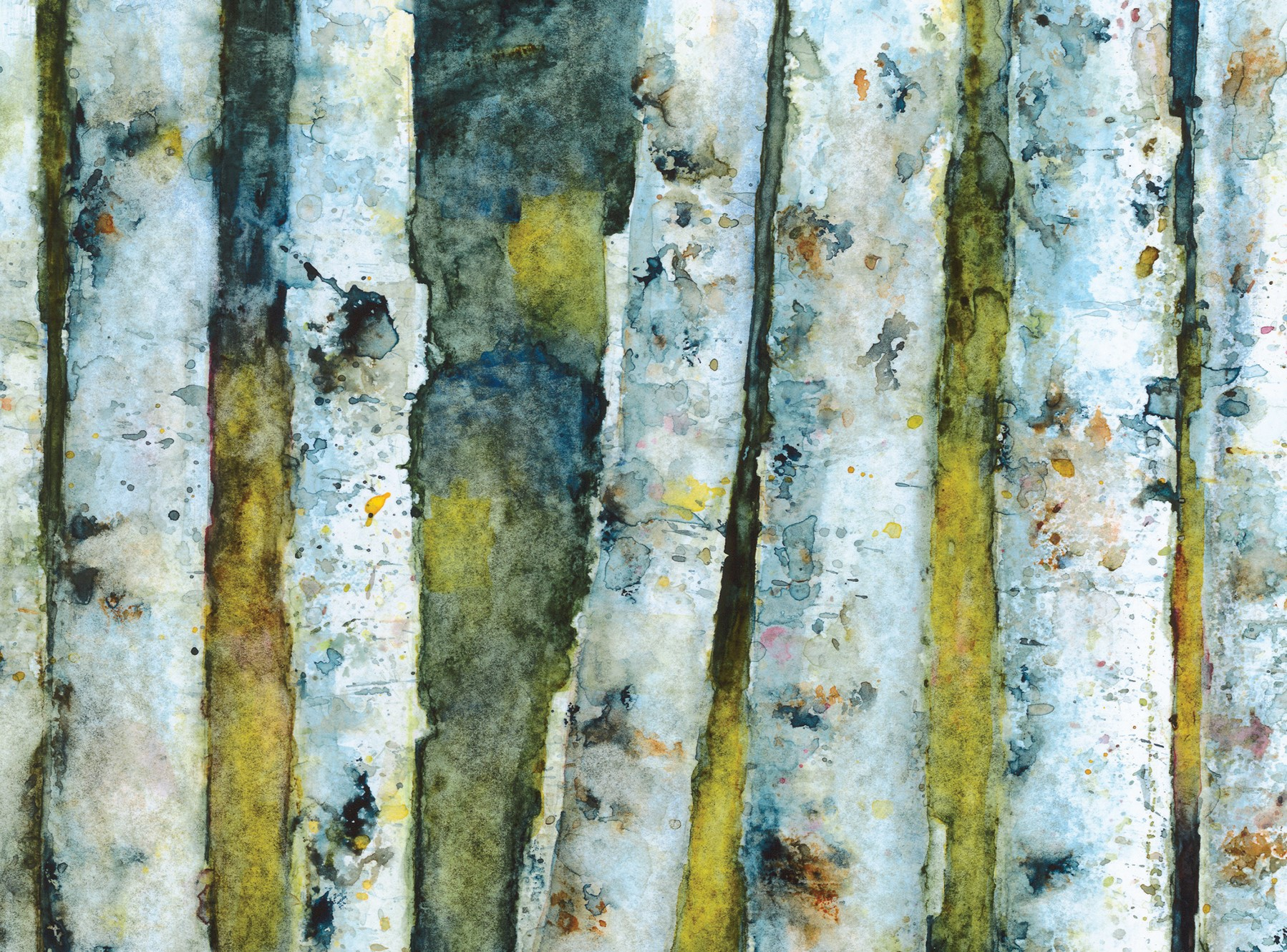Author John Pastor illustrated his book on the complexities of North Woods ecosystems.