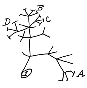 Theory of Evolution development history of evolutionary