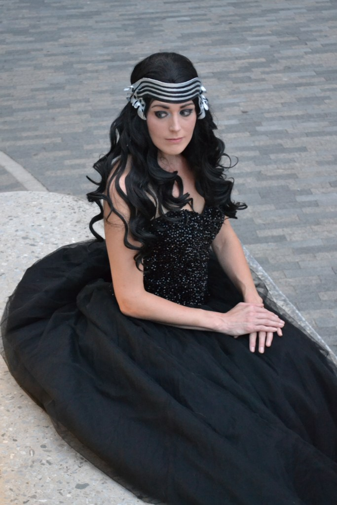 Disney Princess Kylo Ren
