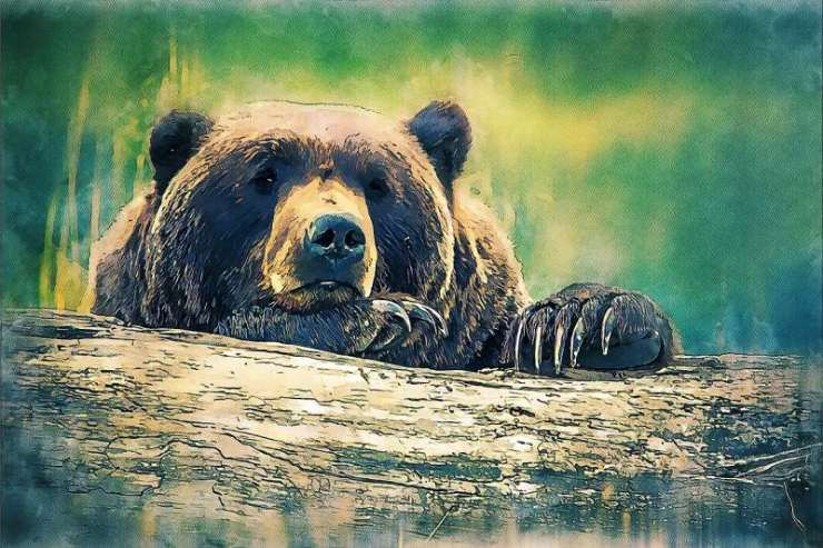 Bear, symbol of the downtrend.