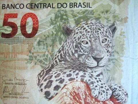 Brazilian currency (Pixabay)