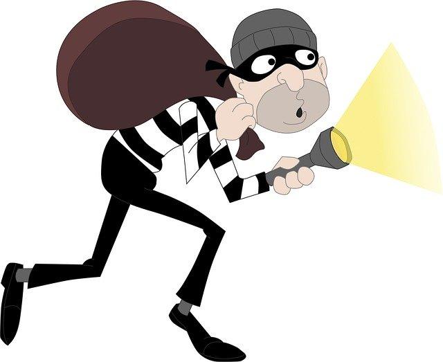 Criminal, burglar