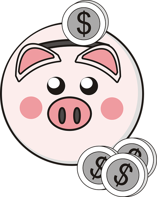 Piggy Bank - Saving Is Not an Income