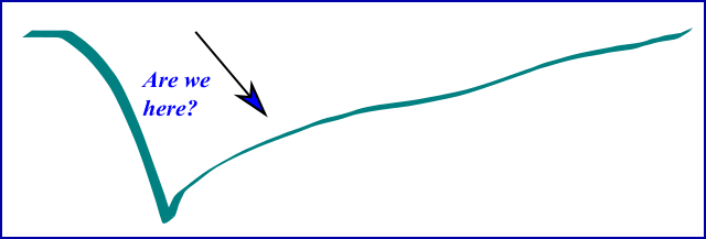 L-Shaped or root-sign recovery from crisis
