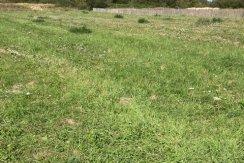 Terrain viabilisé 400 m2 à Saint-Jean-de-Monts - ELIOT IMMOBILIER  SAINT JEAN DE MONTS