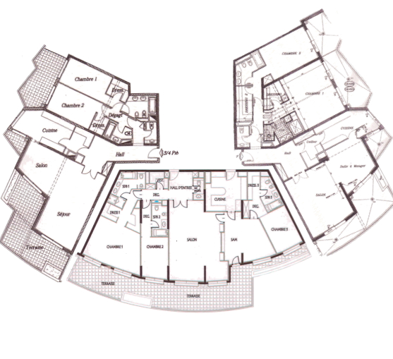 vente appartement monaco Grand appartement  Jardin