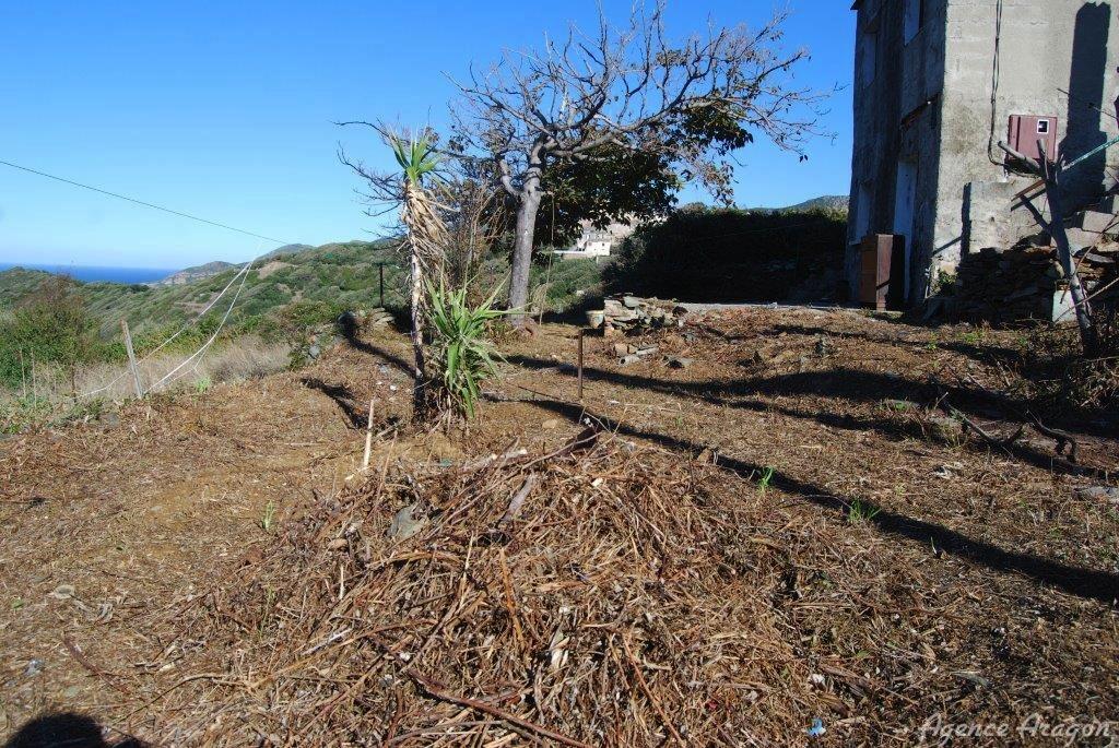 Maison de village  rnover  Morsiglia dans le Cap Corse Vente refv0194