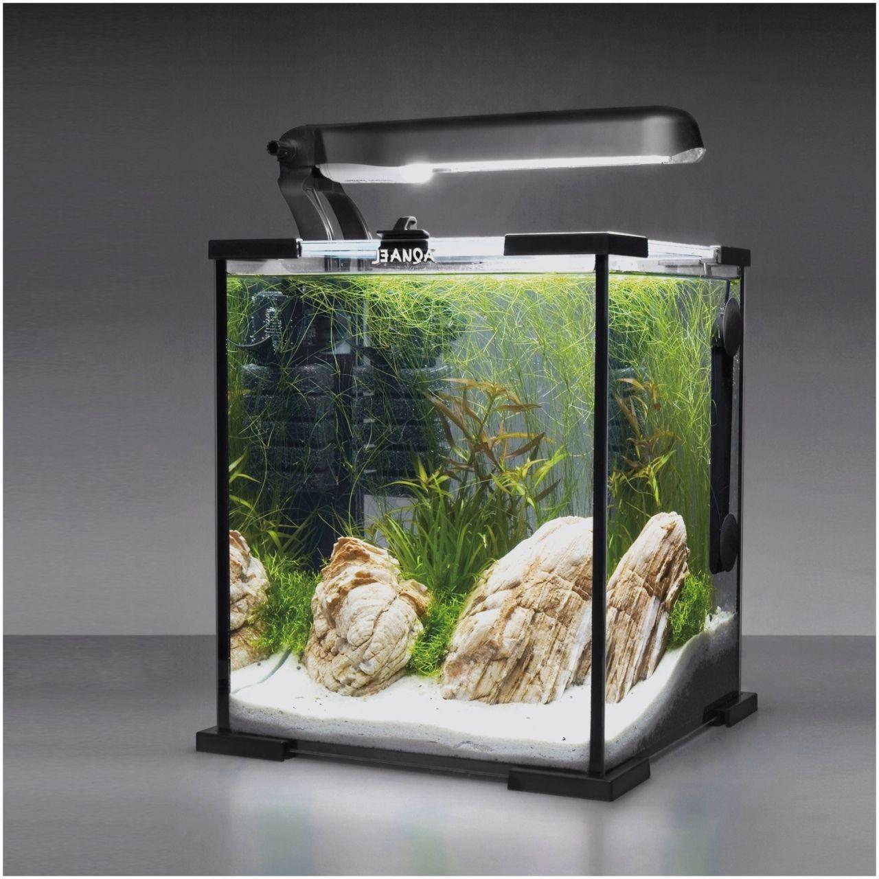 aquarium meuble pas cher