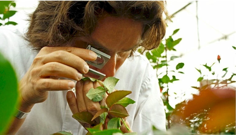 Bichópolis, gran aliado para el control biológico de plagas y mejoramiento de condiciones de cultivos comerciales #agenciapyme